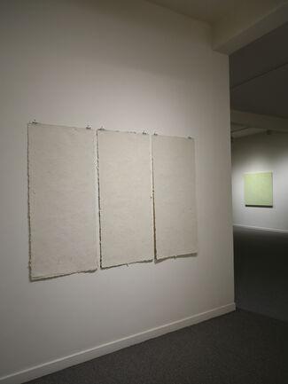 Anne Appleby - Nascent, installation view
