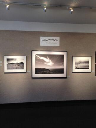 Cara Weston: The World Around, installation view