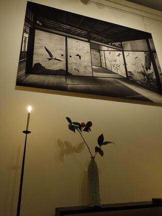An Exhibition of Japanese Fusuma Photography by Kenji Wakasugi – Synthesis –, installation view