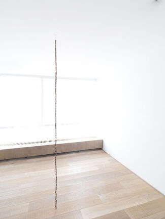 Michel François, installation view