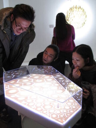 Splendorous World - Fiona WONG Lai-ching, installation view