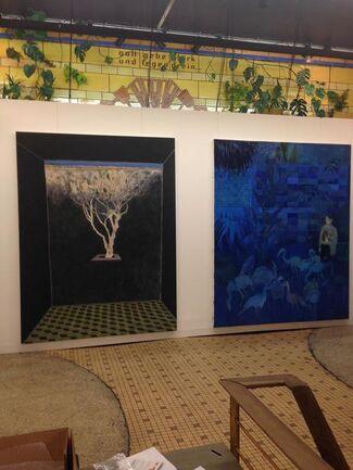 Instituto de Visión at LISTE 2015, installation view
