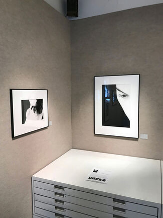 RALPH GIBSON: BODY PARTS, installation view