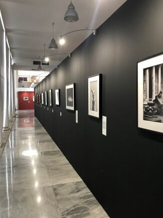 Elliott Erwitt, Icons, installation view