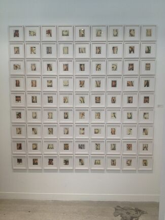 Andy Warhol's Sex Parts & Torsos Polaroid Photos, installation view