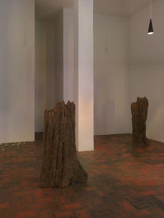 David Adamo, installation view