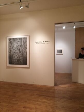 Mary Reilly: Graffiti Trees, installation view