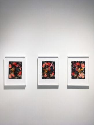Joachim Schulz   Blumenstilleben: Flower Still Lifes, installation view