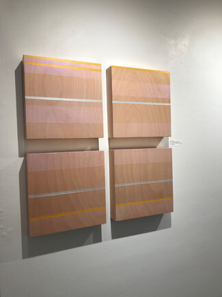 Like the Wings of a Dragonfly, installation view