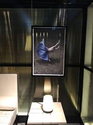 Desert Flower II: Photographs by Guilherme Licurgo at Armani/Casa, Miami, installation view