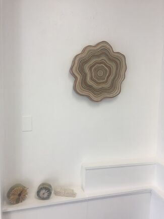 """""""The Evocation of a Moment; A Gesture Jessica Drenk"""", installation view"""