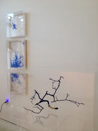 """""""Tranquil Spree"""". Ching Wen Tsai's first solo show, installation view"""