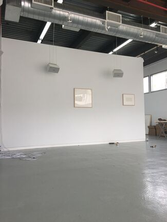Fever Songs, installation view