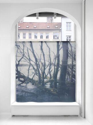 Human; Nature, installation view
