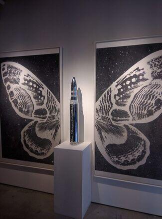 Rubem Robierb: New Works, installation view