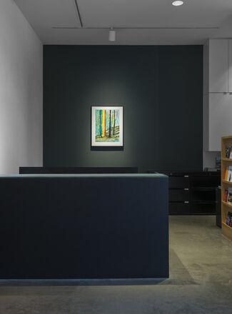 David Hockney: The Yosemite Suite, installation view