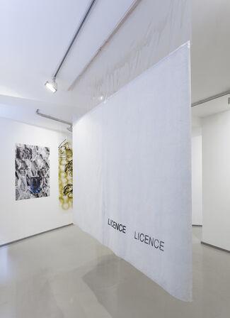Camilla Wills   Licence, installation view
