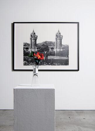 BEHIND THE GARDEN | Kazuo Okazaki , Shinji Ogawa, installation view