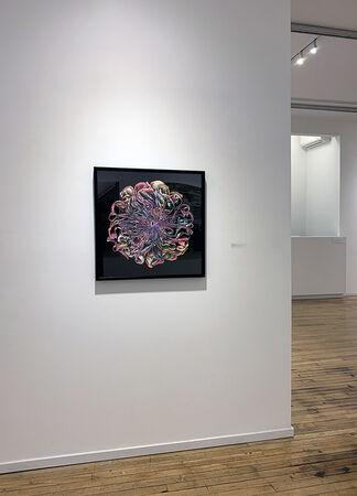 Bau-Xi Gallery at Photo London 2020, installation view