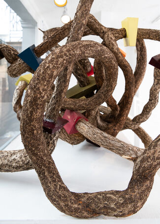 Intertwined, installation view
