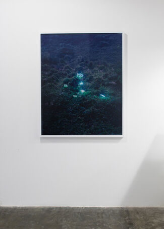 Jung Lee, installation view