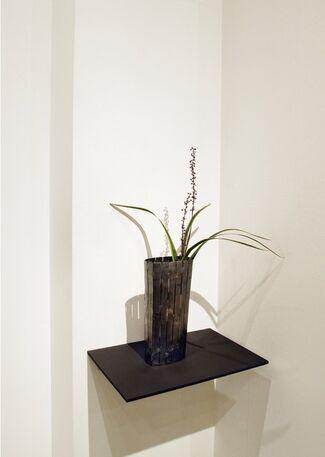 "vol.38 Takejiro Hasegawa ""Form of Abundance"", installation view"