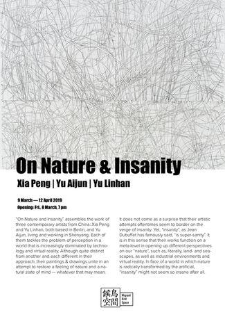 On Nature & Insanity: Xia Peng | Yu Aijun | Yu Linhan, installation view