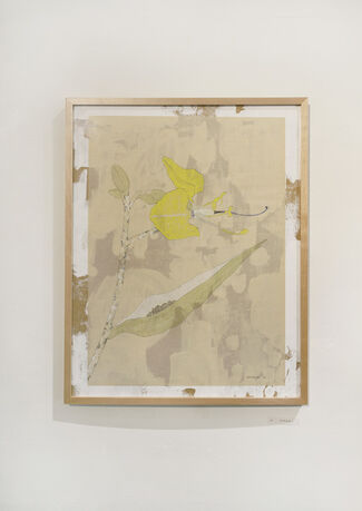 "vol.67 Kentarou Tanaka ""図感"", installation view"