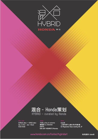 """Hybrid"" 混合, installation view"