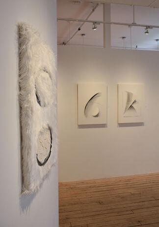 Illusive Presence, installation view
