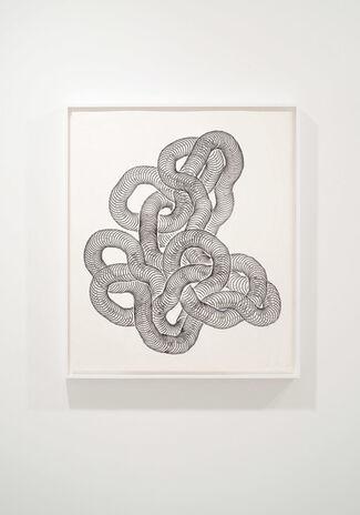 Tara Donovan, installation view