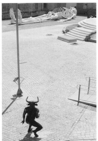 Domenico Borrelli: Tauromachy, installation view