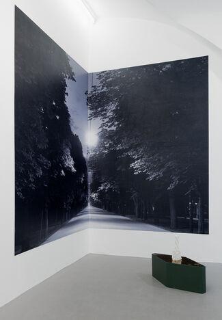 Luisa Kasalicky- Invitroperspektive, installation view