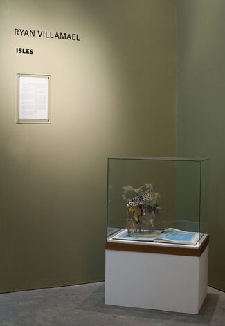 Isles   RYAN VILLAMAEL, installation view