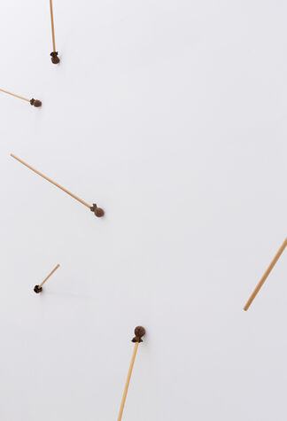 """PETER DE MEYER """"heads and tails"""", installation view"""