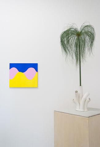 Osamu Kobayashi and Erica Prince, installation view
