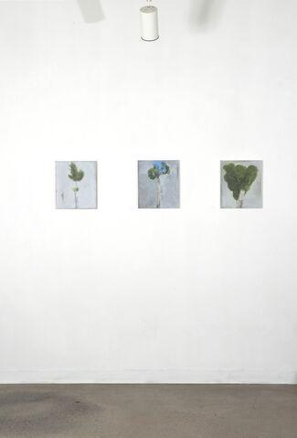 Lucas Reiner: I see men as trees, walking, installation view