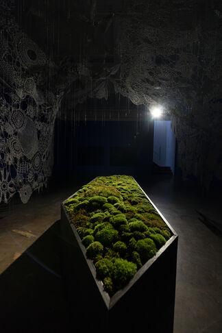 Unkyung HUR: Botanimal Garden, installation view