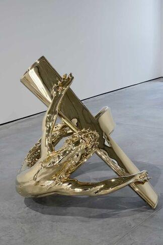 Wim Delvoye Show, installation view