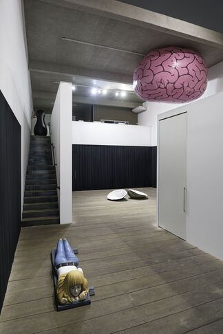 Espelho Curvo / Ana Luiza Dias Batista, installation view