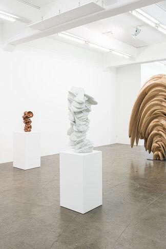 Tony Cragg, installation view
