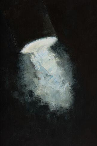 Spotlight by Goran Djurovic, installation view
