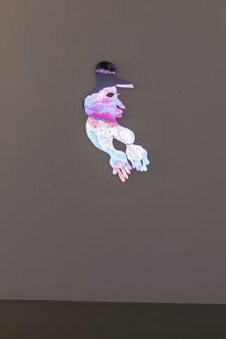 Tschabalala Self: Bodega Run, installation view