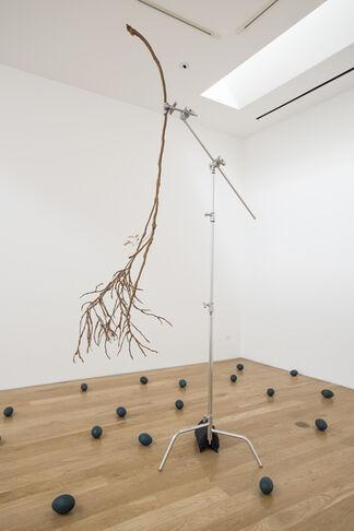 ANDREW CAMERON | EMILE HALPERN | STANDARD CANDLES, installation view
