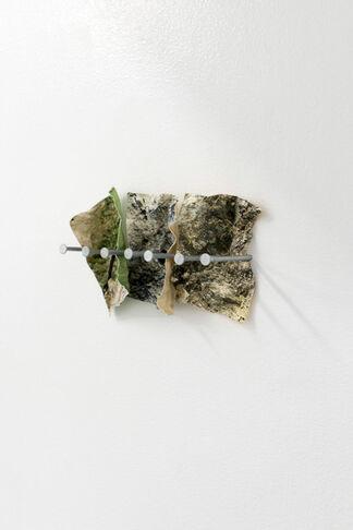 Alex Kwok, Land's End, installation view