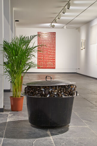 Broodthaerskabinet, installation view