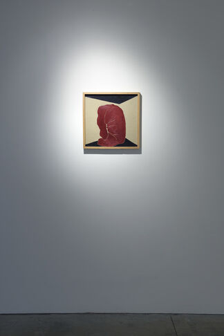 Alba Hodsoll: PoV, installation view
