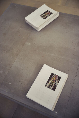German Pavilion, installation view