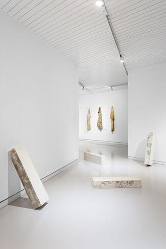 Exúvia, installation view