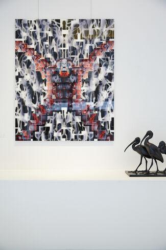 METAMORPHOSES - Fractal Bestiary, installation view